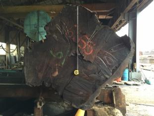 ウォールナット原木