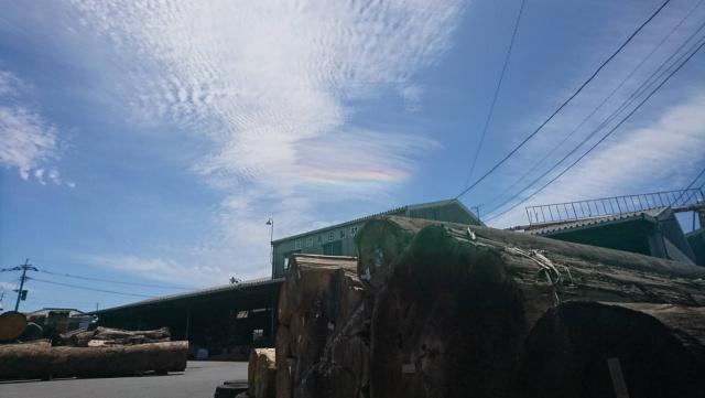 高田製材所 木材