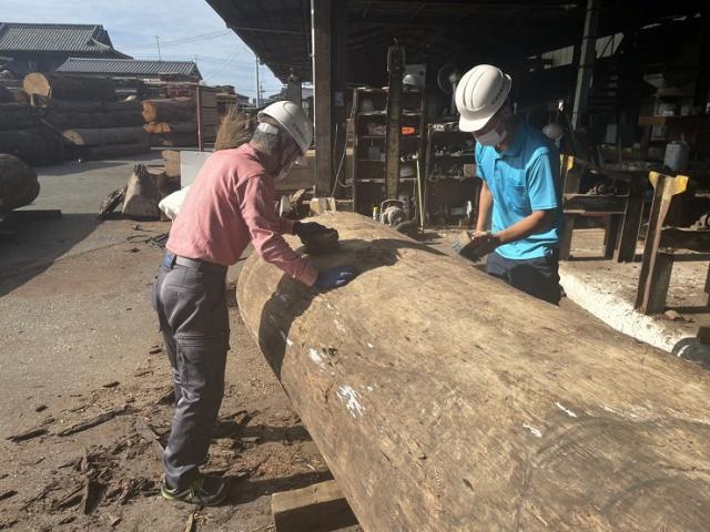 ニューギニアウォールナット、ニューギニアウォールナット製材